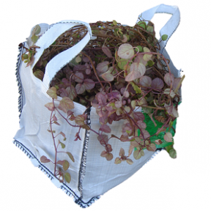 Big Bag Pequeño con Plantas