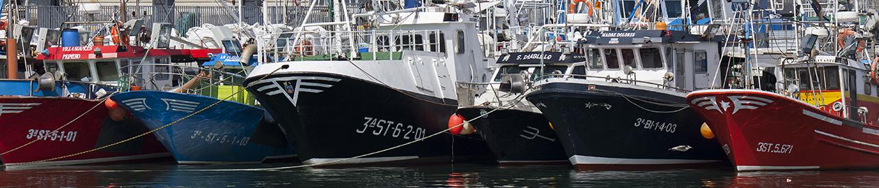 Cofradias de Pescadores